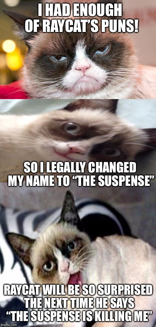 "Bad Pun Grumpy Cat | I HAD ENOUGH OF RAYCAT'S PUNS! SO I LEGALLY CHANGED MY NAME TO ""THE SUSPENSE"" RAYCAT WILL BE SO SURPRISED THE NEXT TIME HE SAYS ""THE SUSPENS 