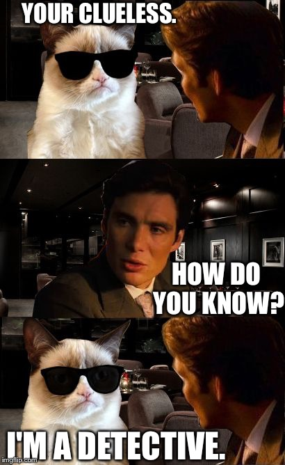 Grumpy will get to the bottom of this. | YOUR CLUELESS. HOW DO YOU KNOW? I'M A DETECTIVE. | image tagged in leonardo and grumpy cat,meme,funny meme | made w/ Imgflip meme maker