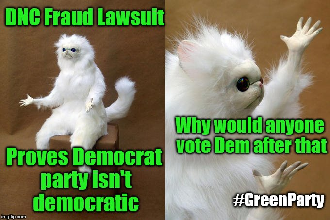 DemExit GreenEnter | DNC Fraud Lawsuit Proves Democrat party isn't democratic Why would anyone vote Dem after that #GreenParty | image tagged in memes,persian cat room guardian,dnc,democratic party,green party,democracy | made w/ Imgflip meme maker