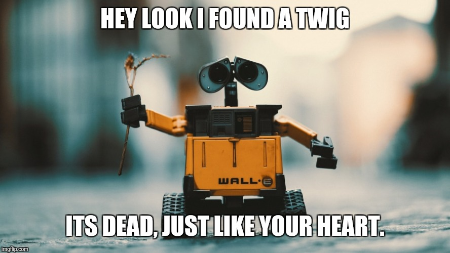 Wall-E be nice | HEY LOOK I FOUND A TWIG ITS DEAD, JUST LIKE YOUR HEART. | image tagged in wall-e,memes | made w/ Imgflip meme maker