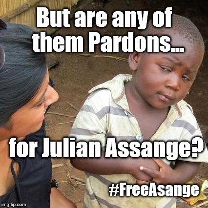 Third World Skeptical Kid Meme | But are any of  them Pardons... for Julian Assange? #FreeAsange | image tagged in memes,third world skeptical kid | made w/ Imgflip meme maker