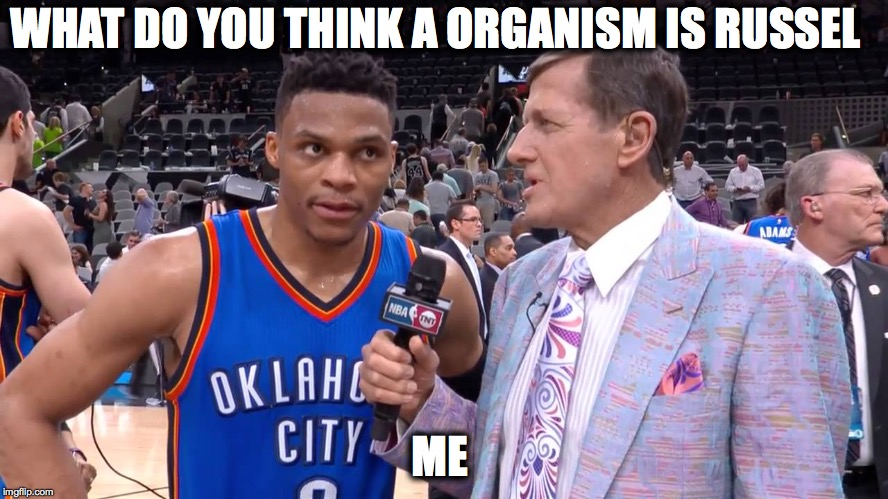 WHAT DO YOU THINK A ORGANISM IS RUSSEL ME | image tagged in russell westbrook | made w/ Imgflip meme maker