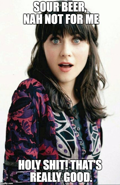 SOUR BEER, NAH NOT FOR ME HOLY SHIT! THAT'S REALLY GOOD. | image tagged in zooey deschanel shocked face | made w/ Imgflip meme maker