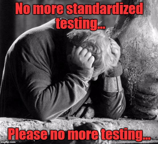 No more standardized testing... Please no more testing... | image tagged in no more tweets | made w/ Imgflip meme maker