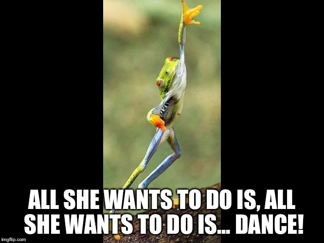 ALL SHE WANTS TO DO IS, ALL SHE WANTS TO DO IS... DANCE! | image tagged in funnymemes | made w/ Imgflip meme maker