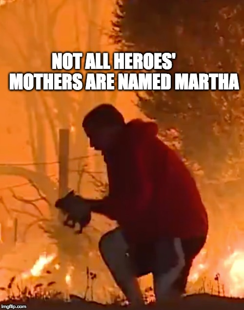 Heroes save bunnies | NOT ALL HEROES'     MOTHERS ARE NAMED MARTHA | image tagged in heroes | made w/ Imgflip meme maker