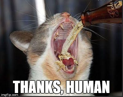 THANKS, HUMAN | made w/ Imgflip meme maker