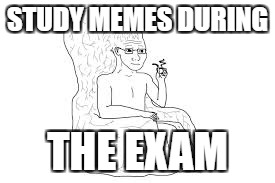 STUDY MEMES DURING THE EXAM | made w/ Imgflip meme maker