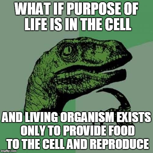 Cell is the key | WHAT IF PURPOSE OF LIFE IS IN THE CELL AND LIVING ORGANISM EXISTS ONLY TO PROVIDE FOOD TO THE CELL AND REPRODUCE | image tagged in memes,philosoraptor,cell,purpose of life,meaning of life | made w/ Imgflip meme maker