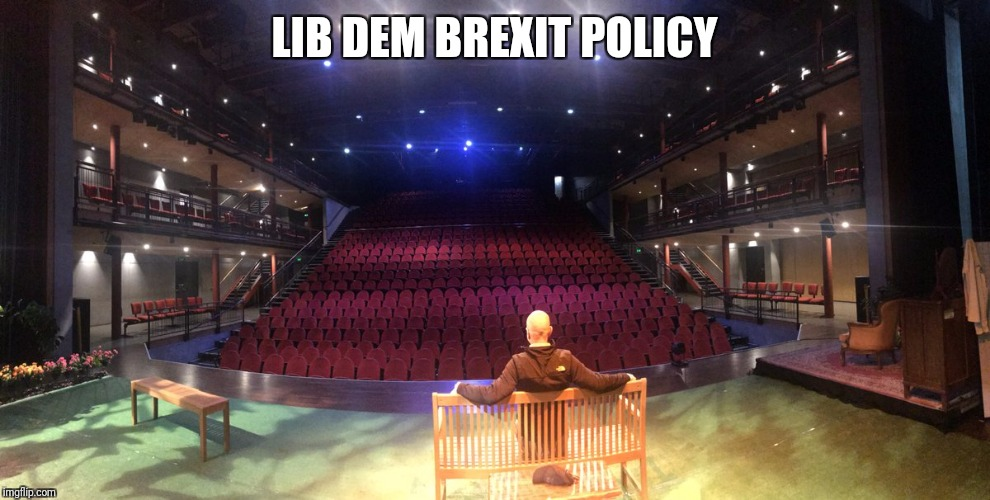 LIB DEM BREXIT POLICY | image tagged in lib dem brexit policy | made w/ Imgflip meme maker