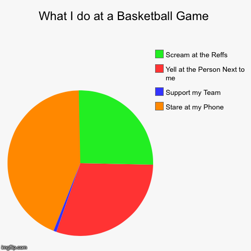 What I do at a Basketball Game | Stare at my Phone, Support my Team, Yell at the Person Next to me, Scream at the Reffs | image tagged in funny,pie charts | made w/ Imgflip pie chart maker
