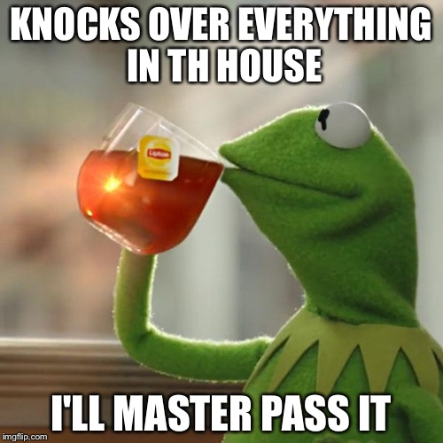 But Thats None Of My Business Meme | KNOCKS OVER EVERYTHING IN TH HOUSE I'LL MASTER PASS IT | image tagged in memes,but thats none of my business,kermit the frog | made w/ Imgflip meme maker