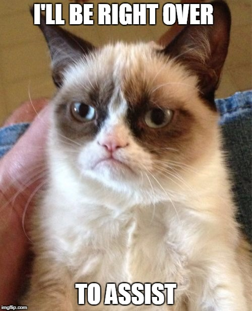 Grumpy Cat Meme | I'LL BE RIGHT OVER TO ASSIST | image tagged in memes,grumpy cat | made w/ Imgflip meme maker