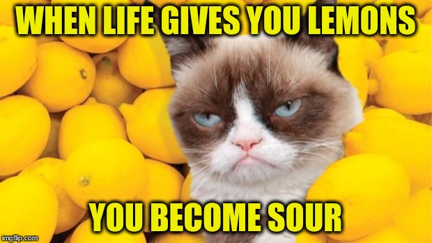 Grumpy Cat lemons | WHEN LIFE GIVES YOU LEMONS YOU BECOME SOUR | image tagged in grumpy cat lemons | made w/ Imgflip meme maker