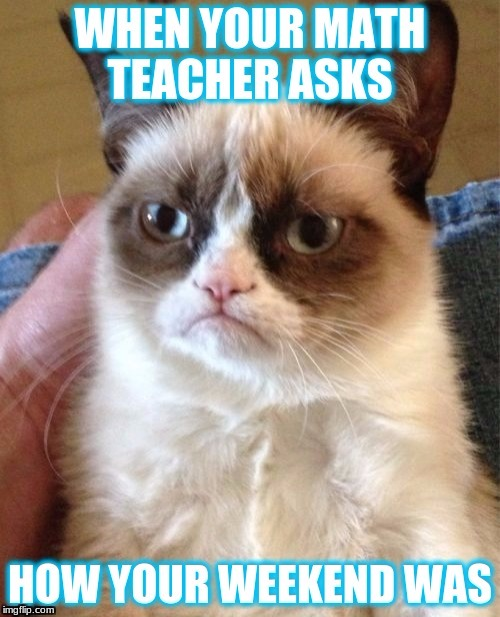 Grumpy Cat | image tagged in grumpy cat,lazy | made w/ Imgflip meme maker