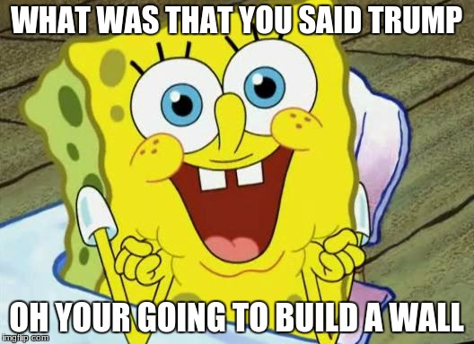 Spongebob hopeful |  WHAT WAS THAT YOU SAID TRUMP; OH YOUR GOING TO BUILD A WALL | image tagged in spongebob hopeful | made w/ Imgflip meme maker