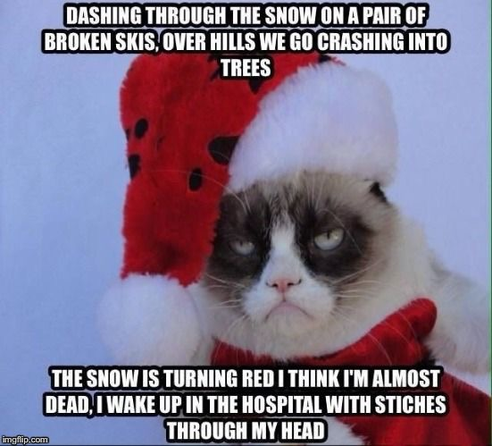 Grumpy Xmas | image tagged in grumpy cat,xmas,memes | made w/ Imgflip meme maker