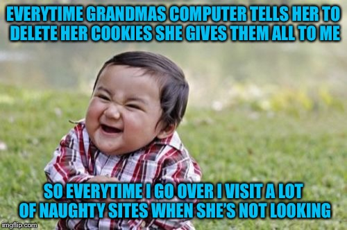Evil Toddler Meme | EVERYTIME GRANDMAS COMPUTER TELLS HER TO DELETE HER COOKIES SHE GIVES THEM ALL TO ME SO EVERYTIME I GO OVER I VISIT A LOT OF NAUGHTY SITES W | image tagged in memes,evil toddler,americanpenguin | made w/ Imgflip meme maker