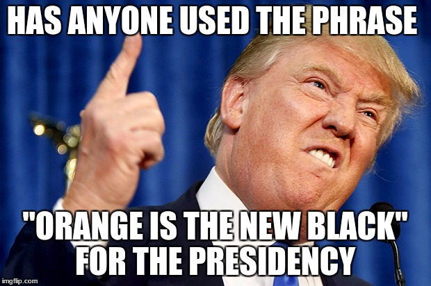 "Donald Trump | HAS ANYONE USED THE PHRASE ""ORANGE IS THE NEW BLACK"" FOR THE PRESIDENCY 