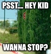 Forum Weapon | PSST.... HEY KID WANNA STOP? | image tagged in forum weapon,stop sign | made w/ Imgflip meme maker