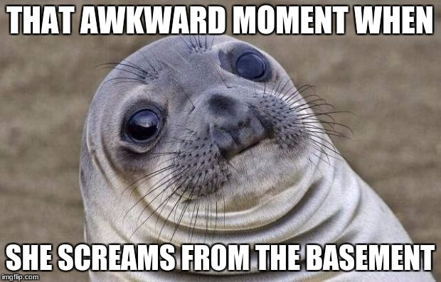 Awkward Moment Sealion Meme | THAT AWKWARD MOMENT WHEN SHE SCREAMS FROM THE BASEMENT | image tagged in memes,awkward moment sealion | made w/ Imgflip meme maker