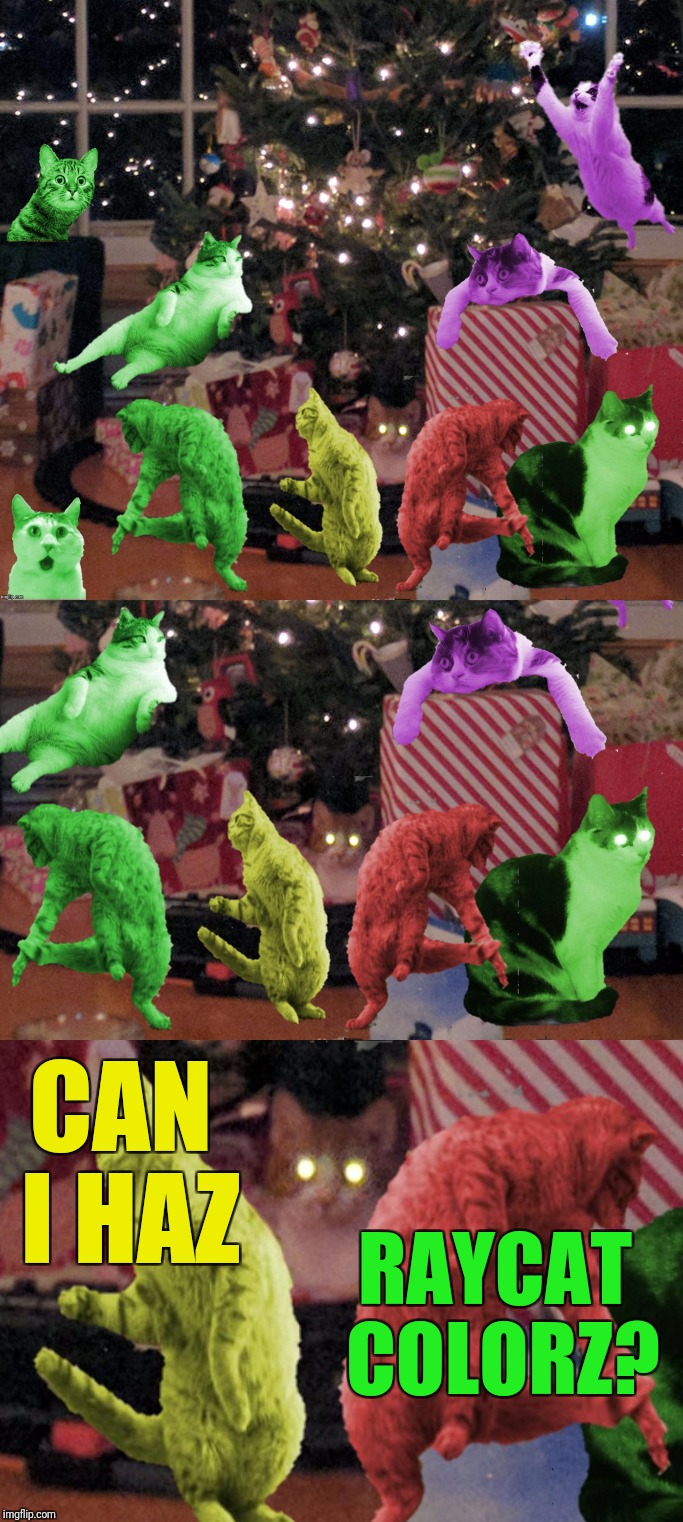 CAN I HAZ RAYCAT COLORZ? | made w/ Imgflip meme maker