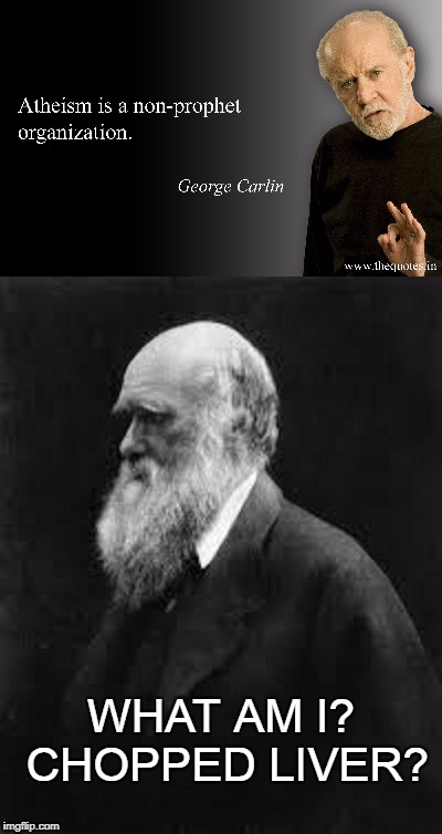 The teachings of Darwin the Prophet. | WHAT AM I? CHOPPED LIVER? | image tagged in atheism | made w/ Imgflip meme maker