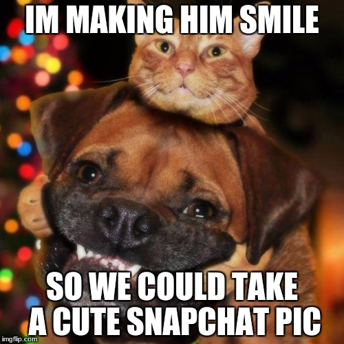 dogs an cats | IM MAKING HIM SMILE SO WE COULD TAKE A CUTE SNAPCHAT PIC | image tagged in dogs an cats | made w/ Imgflip meme maker
