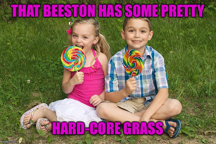 THAT BEESTON HAS SOME PRETTY HARD-CORE GRASS | made w/ Imgflip meme maker
