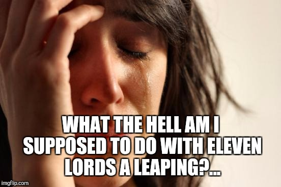 On the 11th day of Christmas... | WHAT THE HELL AM I SUPPOSED TO DO WITH ELEVEN LORDS A LEAPING?... | image tagged in memes,first world problems,christmas,christmas memes,jbmemegeek,12 days of christmas | made w/ Imgflip meme maker