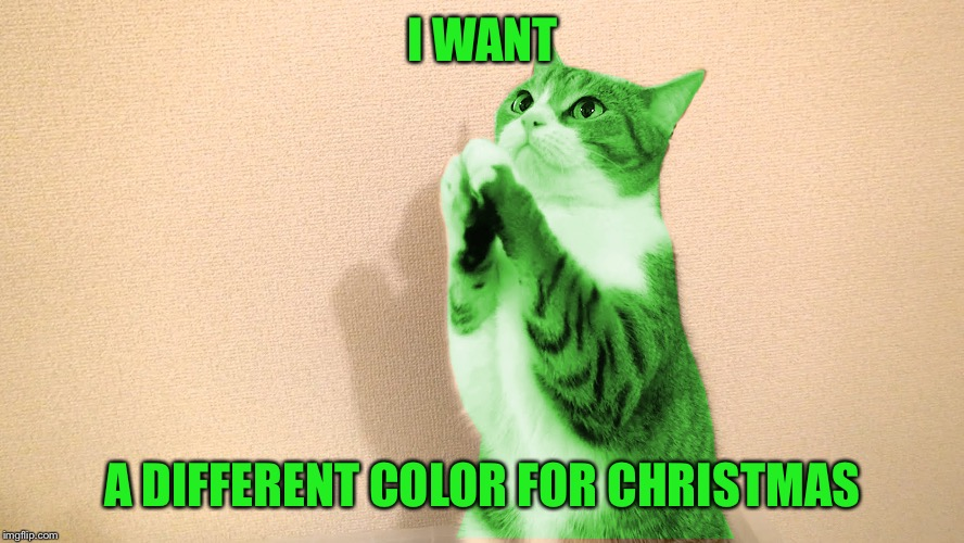 RayCat Pray | I WANT A DIFFERENT COLOR FOR CHRISTMAS | image tagged in raycat pray | made w/ Imgflip meme maker