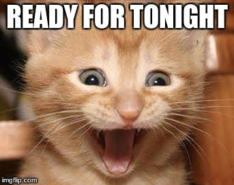 Excited Cat Meme | READY FOR TONIGHT | image tagged in memes,excited cat | made w/ Imgflip meme maker