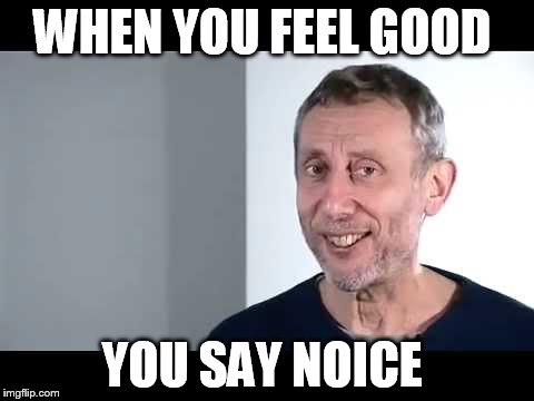 noice |  WHEN YOU FEEL GOOD; YOU SAY NOICE | image tagged in noice | made w/ Imgflip meme maker