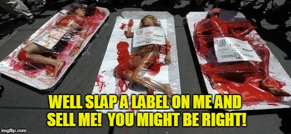 WELL SLAP A LABEL ON ME AND SELL ME!  YOU MIGHT BE RIGHT! | made w/ Imgflip meme maker
