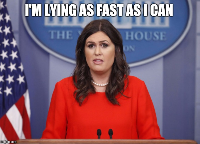 Sarah Huckabee | I'M LYING AS FAST AS I CAN | image tagged in sarah huckabee | made w/ Imgflip meme maker