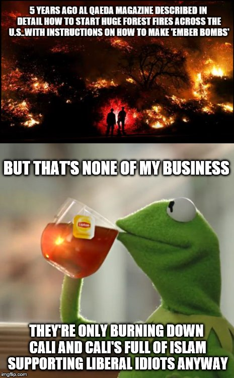 The enemy of my enemys still an idiot | BUT THAT'S NONE OF MY BUSINESS THEY'RE ONLY BURNING DOWN CALI AND CALI'S FULL OF ISLAM SUPPORTING LIBERAL IDIOTS ANYWAY | image tagged in fire,but thats none of my business | made w/ Imgflip meme maker