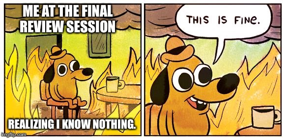 Finals are Hell  |  ME AT THE FINAL REVIEW SESSION; REALIZING I KNOW NOTHING. | image tagged in this is fine dog,finals,help,exams,screwed | made w/ Imgflip meme maker