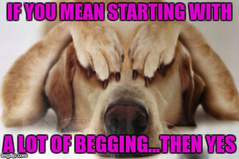 IF YOU MEAN STARTING WITH A LOT OF BEGGING...THEN YES | made w/ Imgflip meme maker