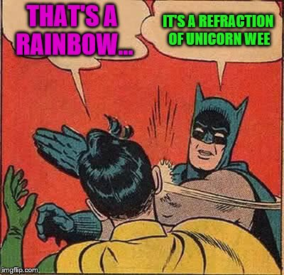 Batman Slapping Robin Meme | THAT'S A RAINBOW... IT'S A REFRACTION OF UNICORN WEE | image tagged in memes,batman slapping robin | made w/ Imgflip meme maker