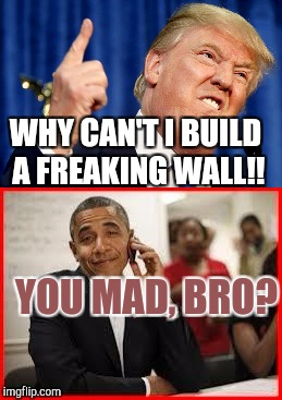 Mexicans, Obama salutes you.  | WHY CAN'T I BUILD A FREAKING WALL!! YOU MAD, BRO? | image tagged in you mad bro,donald trump | made w/ Imgflip meme maker