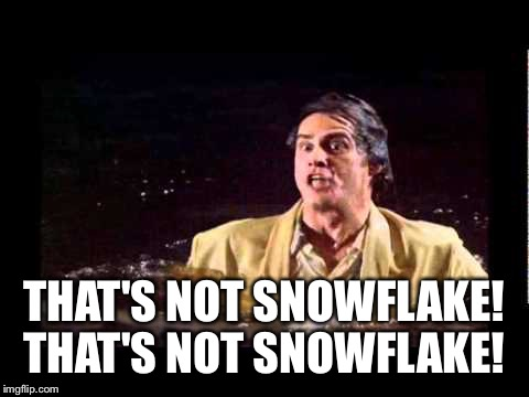 THAT'S NOT SNOWFLAKE! THAT'S NOT SNOWFLAKE! | made w/ Imgflip meme maker
