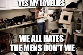 YES MY LOVELIES WE ALL HATES THE MENS DON'T WE | made w/ Imgflip meme maker