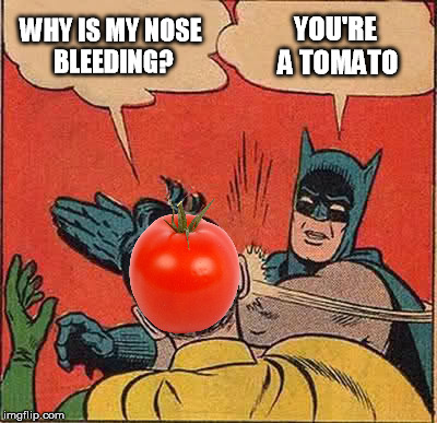 Batman Slapping Robin Meme | WHY IS MY NOSE BLEEDING? YOU'RE A TOMATO | image tagged in memes,batman slapping robin | made w/ Imgflip meme maker
