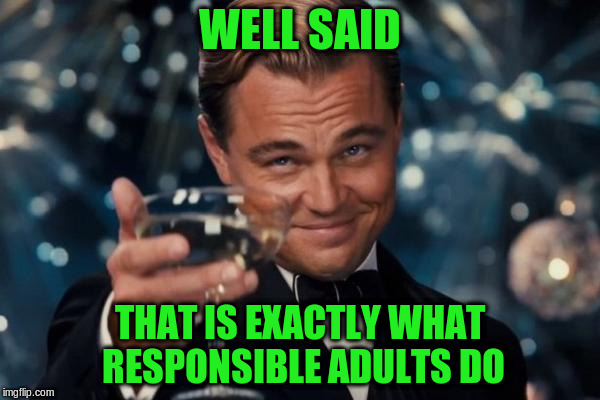 Leonardo Dicaprio Cheers Meme | WELL SAID THAT IS EXACTLY WHAT RESPONSIBLE ADULTS DO | image tagged in memes,leonardo dicaprio cheers | made w/ Imgflip meme maker