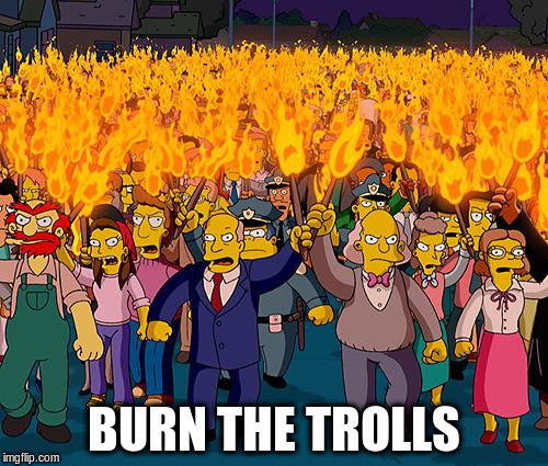 BURN THE TROLLS | made w/ Imgflip meme maker