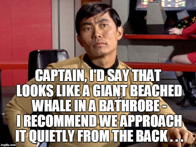 CAPTAIN, I'D SAY THAT LOOKS LIKE A GIANT BEACHED WHALE IN A BATHROBE - I RECOMMEND WE APPROACH IT QUIETLY FROM THE BACK . . . | made w/ Imgflip meme maker