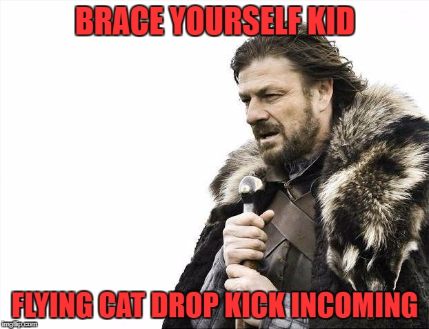 Brace Yourselves X is Coming Meme | BRACE YOURSELF KID FLYING CAT DROP KICK INCOMING | image tagged in memes,brace yourselves x is coming | made w/ Imgflip meme maker