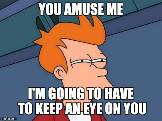 Futurama Fry Meme | YOU AMUSE ME I'M GOING TO HAVE TO KEEP AN EYE ON YOU | image tagged in memes,futurama fry | made w/ Imgflip meme maker