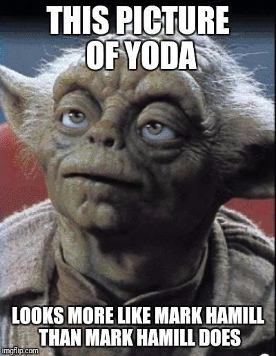 wtf yoda?  | THIS PICTURE OF YODA LOOKS MORE LIKE MARK HAMILL THAN MARK HAMILL DOES | image tagged in wtf yoda | made w/ Imgflip meme maker