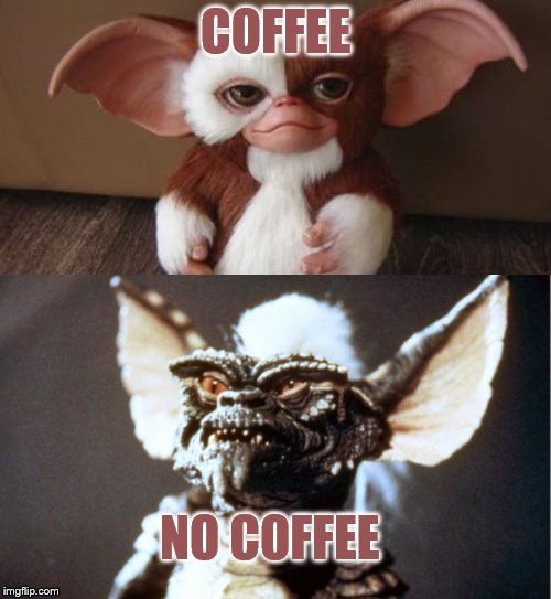 COFFEE NO COFFEE | image tagged in when you think you're getting gizmo but there stripe in disguise | made w/ Imgflip meme maker